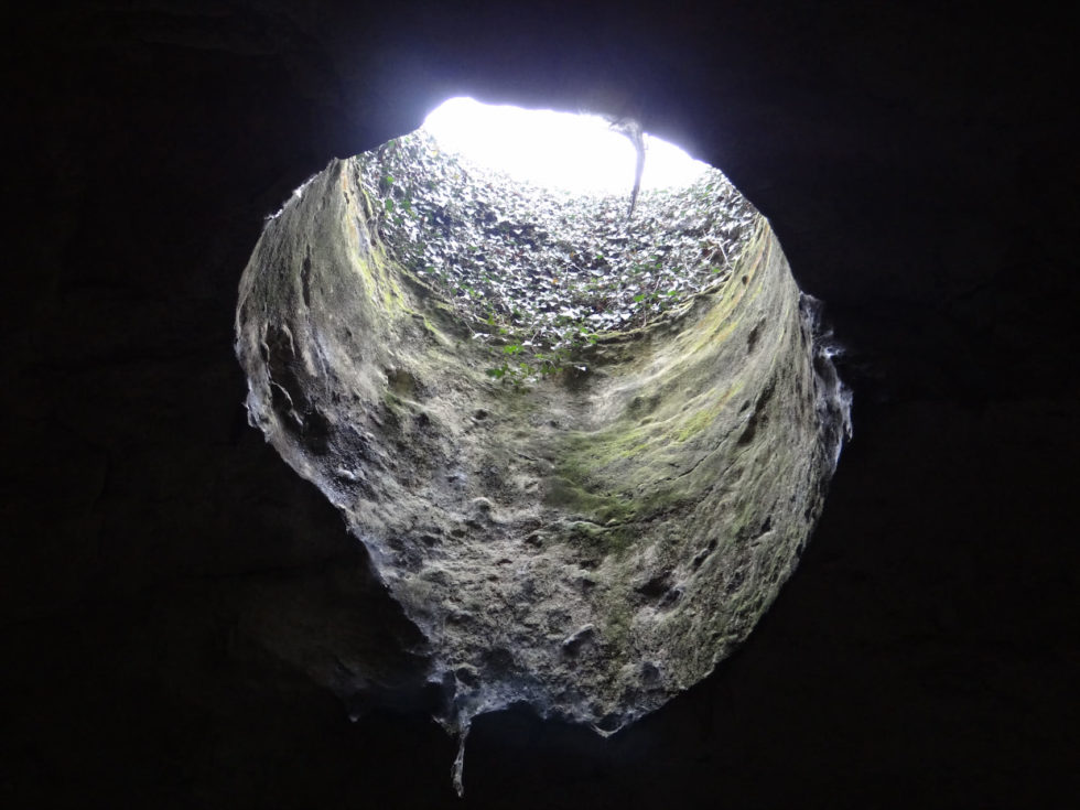 cavestroglodytesdomainedugrandclos-famillerobert